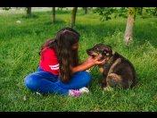Kochany psiak Muchomorek - czy ktoś go pokocha?